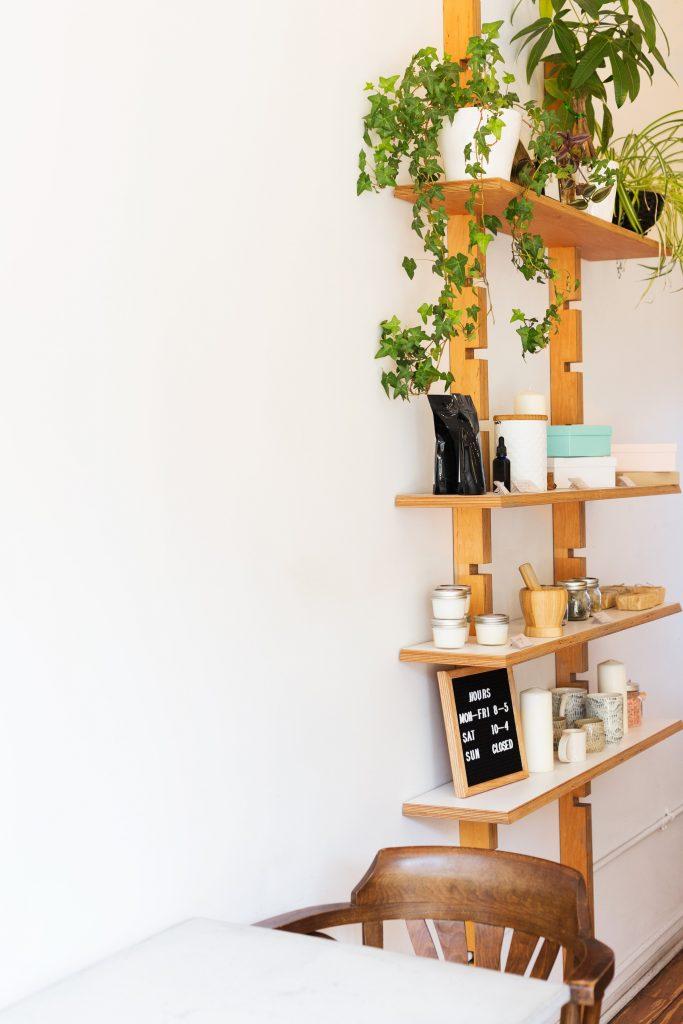 DIY Plants Idea