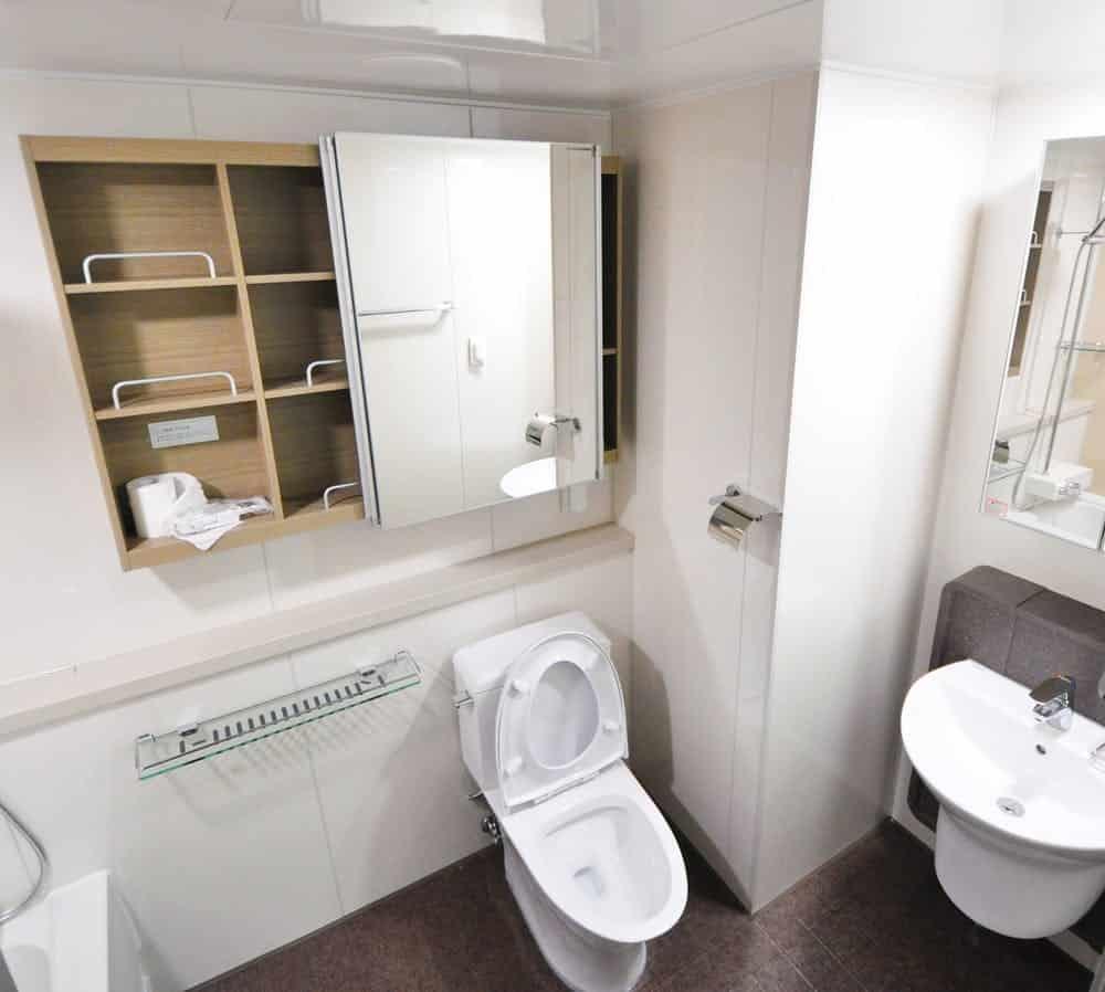 Bathroom Interior Storage Ideas