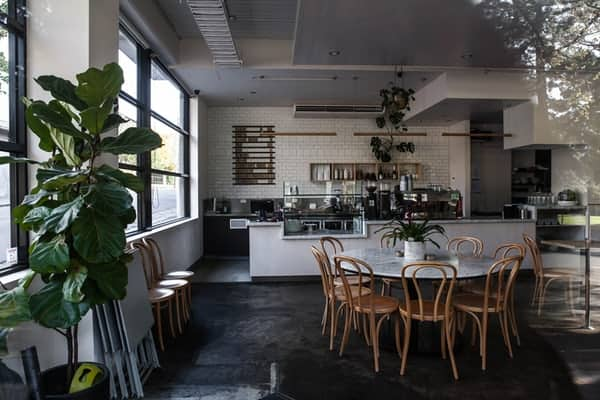 Dining Hall Ideas with Plants